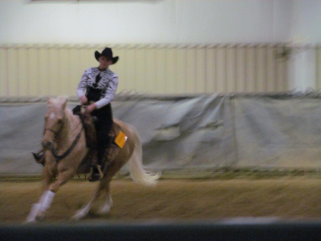 Missouri State Student Qualifies for Semi-Final Horse Show Competition