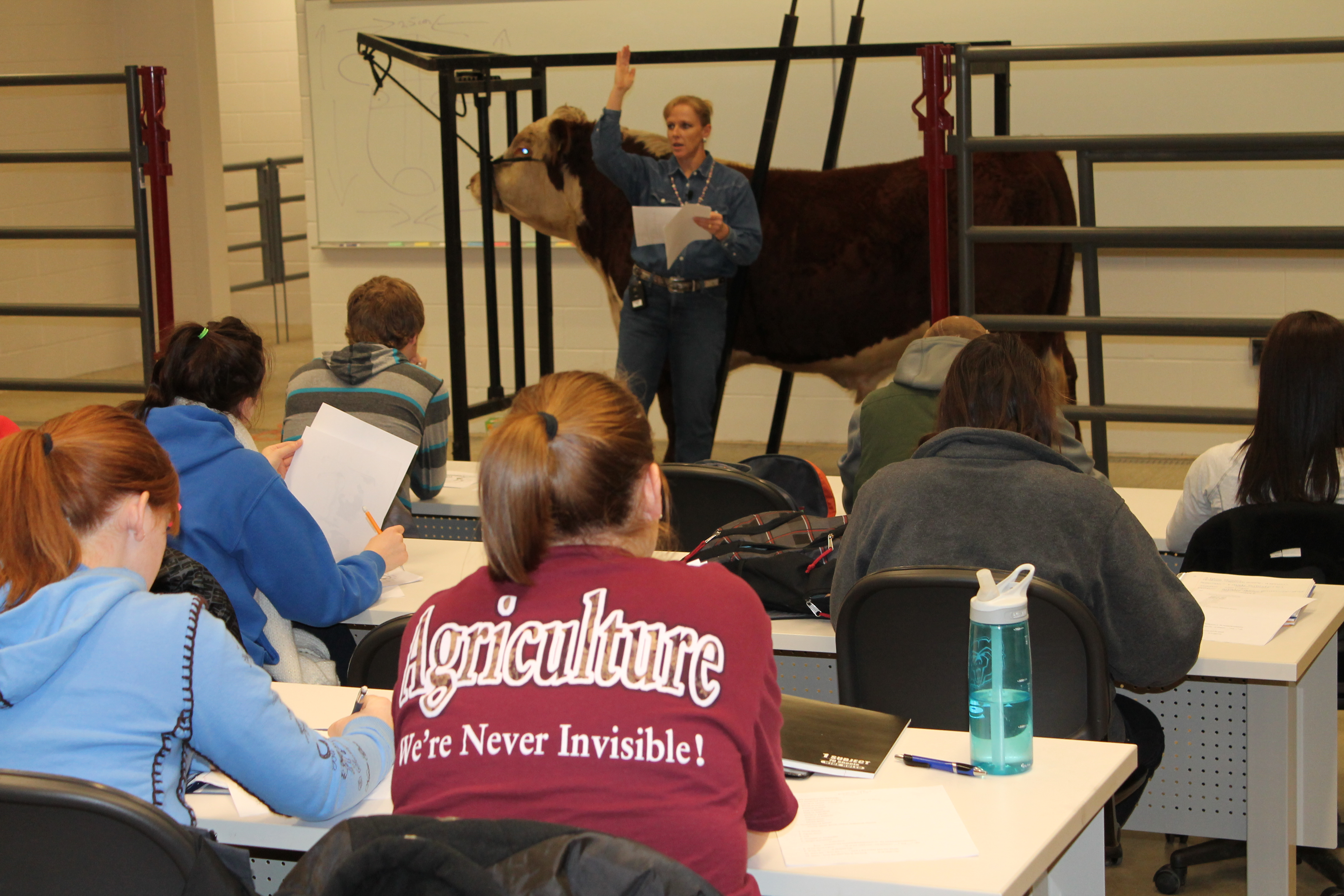 Survey of Sustainable Animal Agriculture to be Offered this Summer.