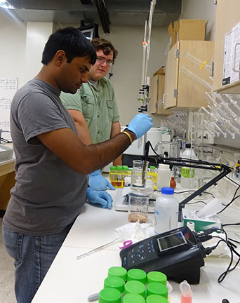 Daniel and Surya analyze the juice processed by three different methods for sugar content, pH and acid content.