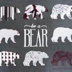 be a bear t'shirt