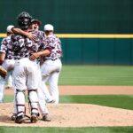 Baseball Bears hugging on pitcher's mound