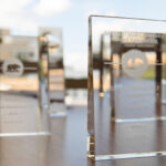 Bear of Distinction Awards