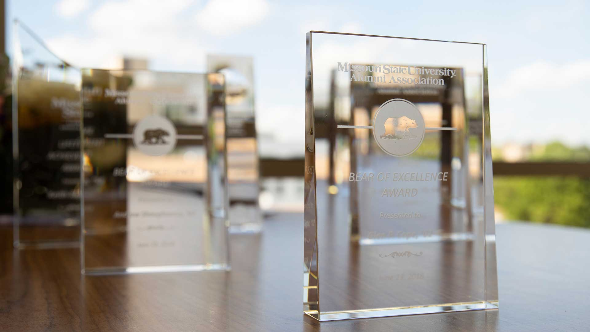 Bears of Distinction awards