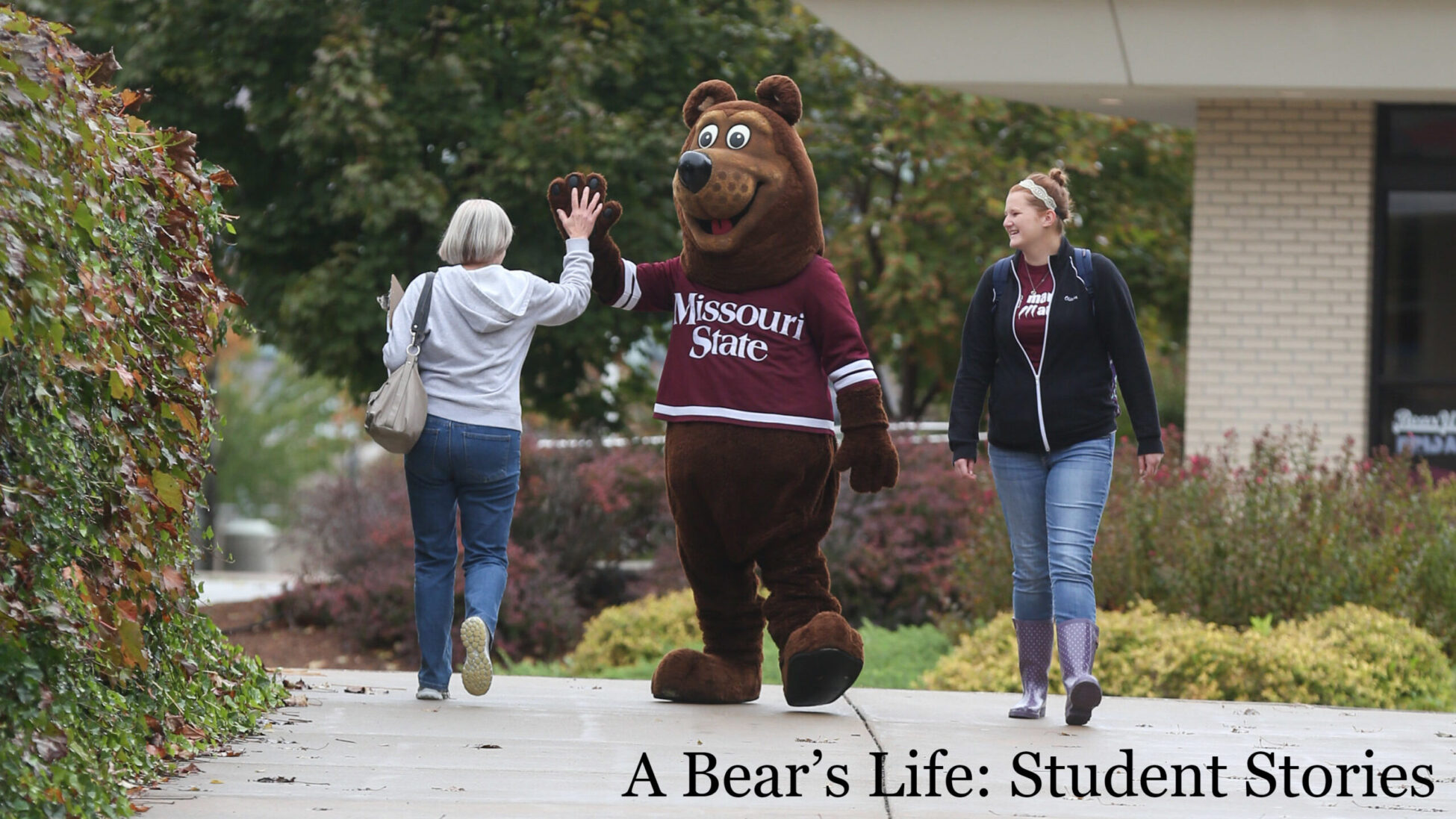 """Boomer giving someone a high five; text on the photo says 'A Bear's Life: Student Stories"""""""