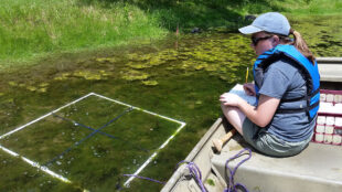 Hannah Whaley collects data from pond.