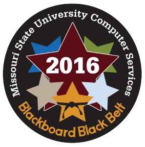 2016_blackbelt_patch