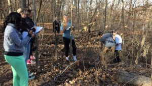 Students doing research during the winter ecology course.