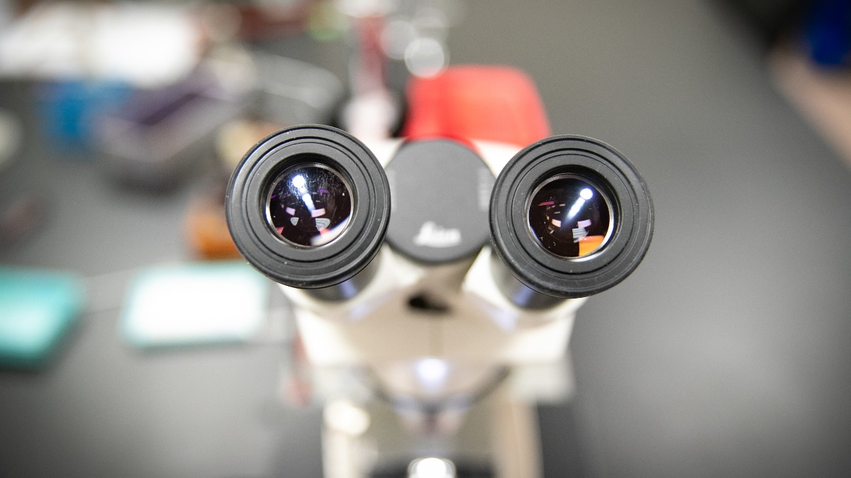 A microscope rests on lab table.