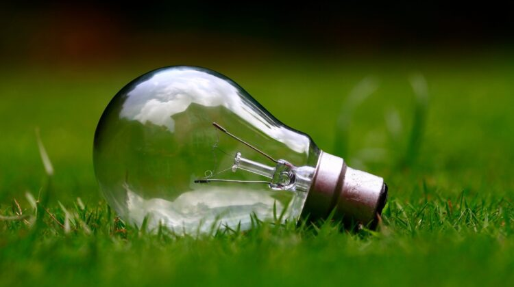 A lightbulb rests in grass. Image by Free-Photos from Pixabay.
