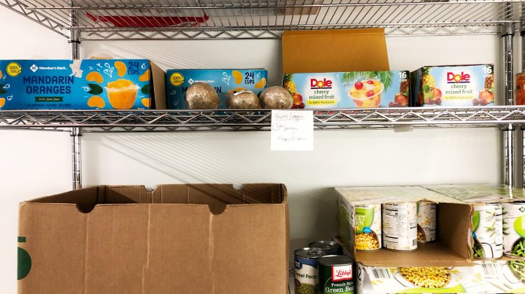 Food donations found in the Bear Pantry at the Center for Community Engagement