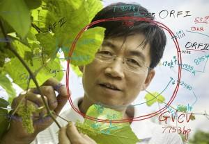 Dr. Wenping Qiu