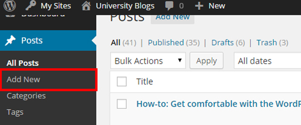 From the Posts view, select Add New
