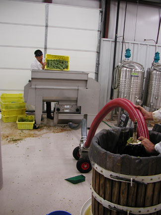 The crushed and destemmed fruit is then pumped into the press. Photo by Noelle Mollhagen.
