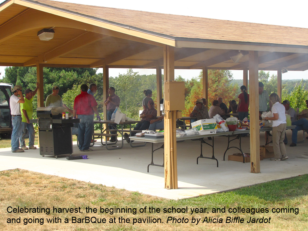 Celebrating harvest with a BBQ