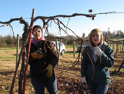 Paige (left) works with Christina who is learning to prune for her Vesta student practicum.