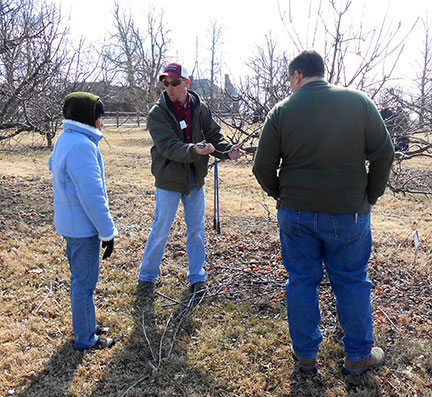 Jeremy Emery discusses apple fruiting wood.