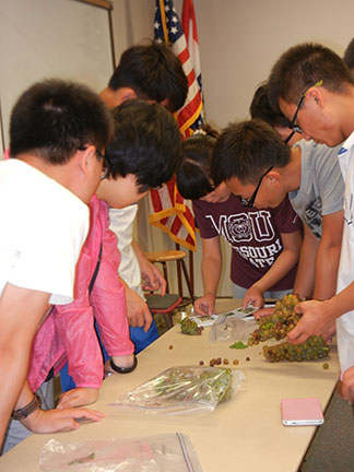 The instructor and students identify the various bunch rots they collected.