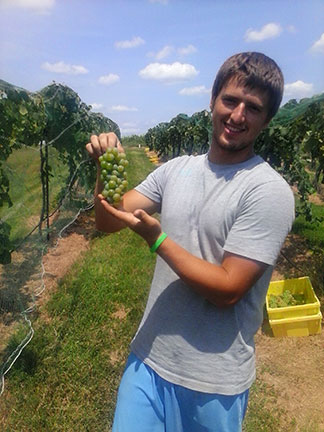 Kellis Parker holds up a cluster of Cayuga White. Photo by Randi Kreuser