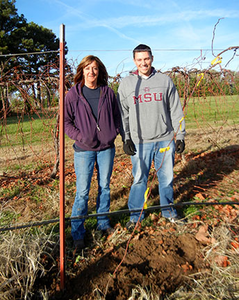 The layer is all set to root and produce a new vine next year. It will remain attached to the mother plant during the next growing season and will be detached from the mother vine in the next dormant season.