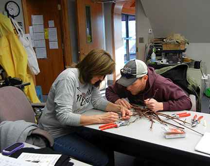 Jeremy Emery shows Shelia Long how to slice through a grape bud in order to assess injury.