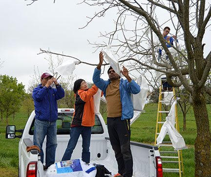 Dr. Hwang, Li-Ling and Surya are the back of the pickup crew.