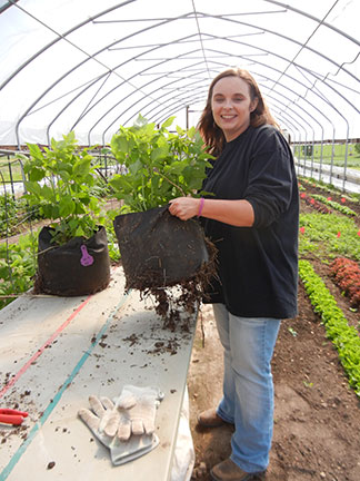 Jennifer Morganthaler holds up the bagged raspberry to show some of the roots growing through the bag.