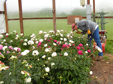Randy Stout takes a moment to stop and smell the flowers!
