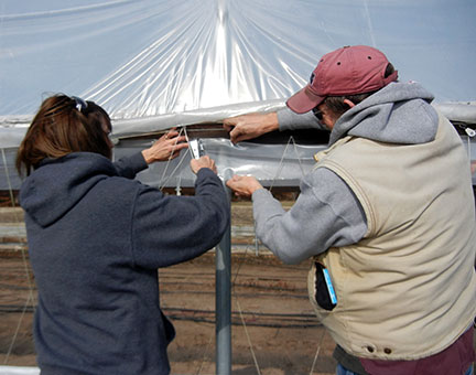 Shelia and Randy staple the plastic strip at the upper part of the sidewall.