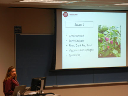Jennifer presents background information on the primocane bearing raspberry cultivars that are being evaluated in this experiment.