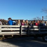 1 of 4 groups on the wagon ride