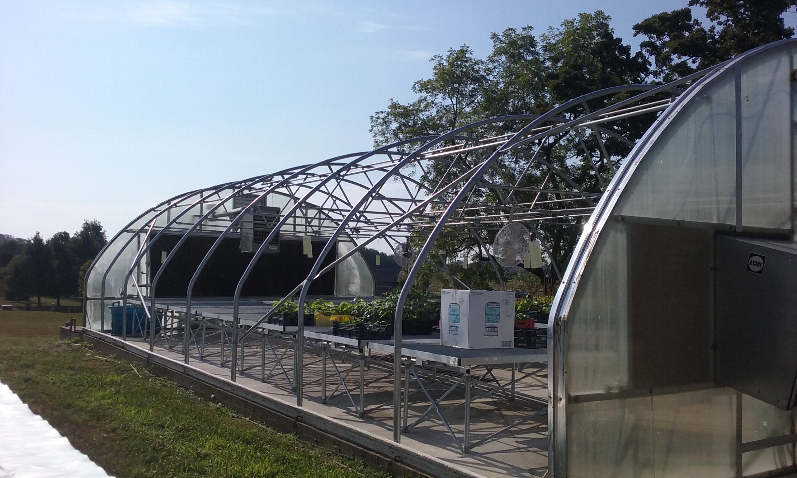 Greenhouse Cover Replaced