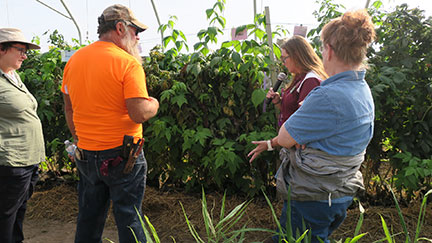 "Jennifer Morganthaler of MSU discussed the raspberry research trial ""High Tunnel Production Rotation of Primo Cane bearing Raspberries in Grow Bags"" funded by the Specialty Crop Block Grant Program and the USDA."