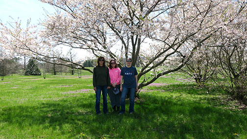 Shelia (left), Beth and Sarah take a moment to enjoy the flowering Cherry tree It seemed to escape much of the late frost injury that claimed other flowers.