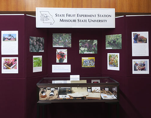 The State Fruit Experiment Station Exhibit featured information on native crops. It is dedicated to John Avery who worked at the station as the field supervisor and horticulturist who initiated many of the projects on native crops at the experiment station.