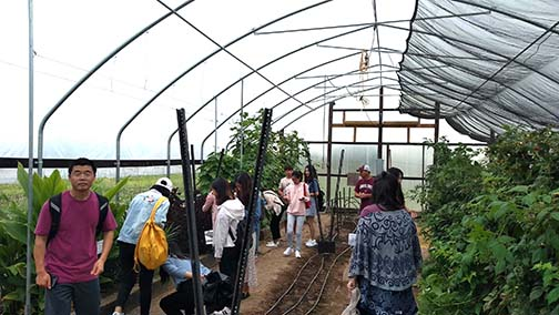 The group went to see what was growing in the high tunnel
