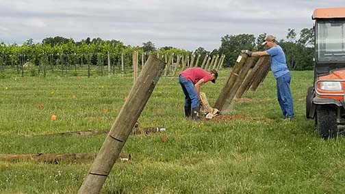 Avery and Tom set the end posts.