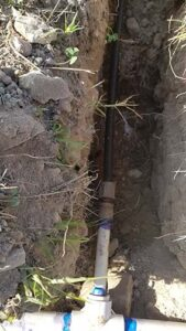 The irrigation tube with 1/2 gph in-line emitters spaced 3 feet apart are installed down each row.