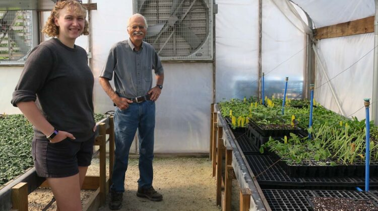 Leroy shows us one of the plant propagation beds.