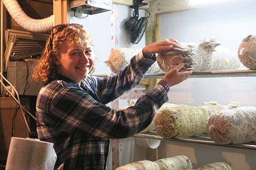 Emily focused on harvest stages of both oyster and Bella mushrooms.
