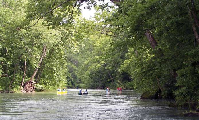 People floating in canoes on the Current River