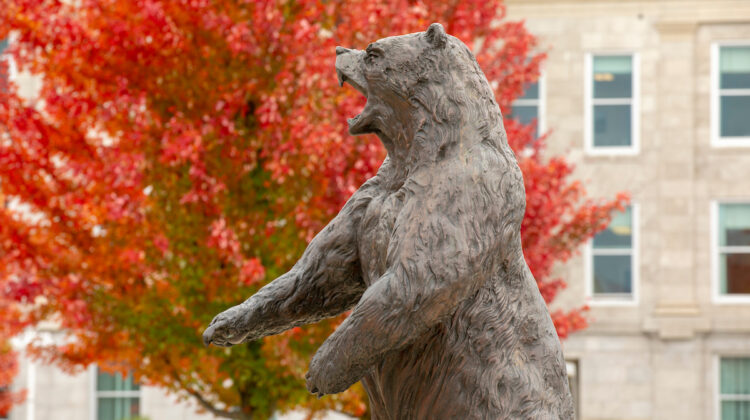A beautiful fall day on campus.