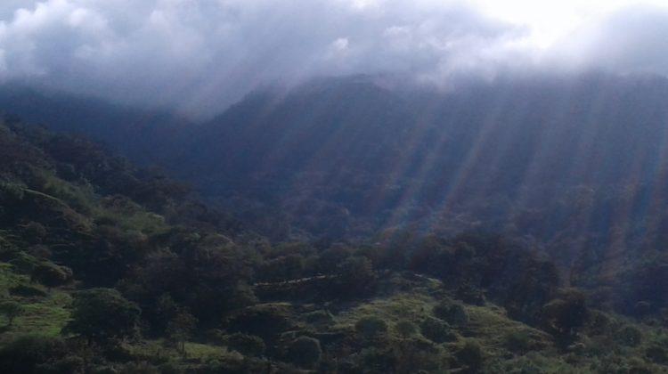 Pura Vida! Costa Rica Trip 2018