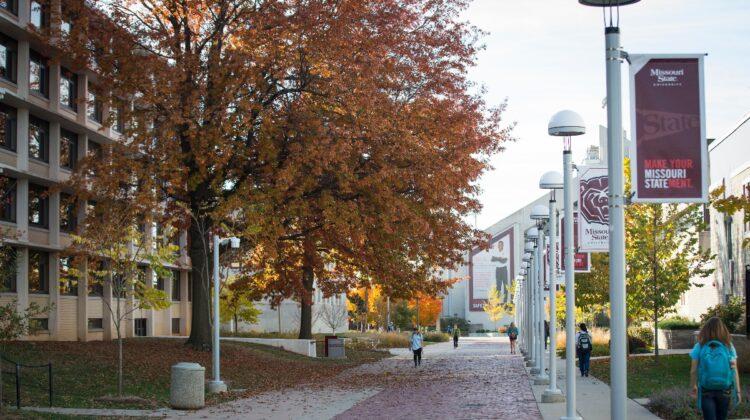 Tree with fall foliage on Missouri State University Springfield campus.