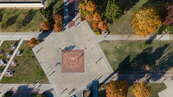 Aerial shot of Bear head bricks.