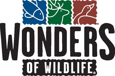 Guest Engagement Program Volunteer – Wonders of Wildlife Museum and Aquarium