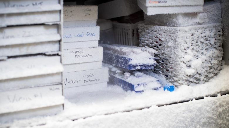 Virus samples in a freezer