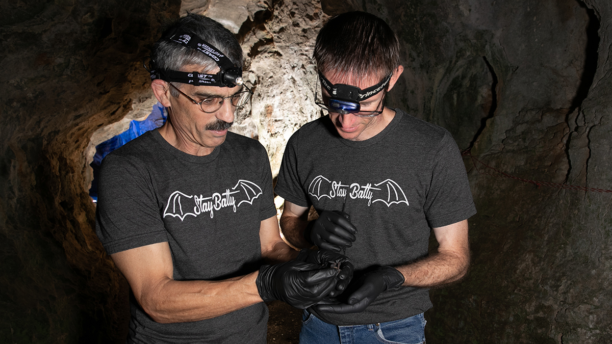 Tomasi and Lupfer hold bat in cave