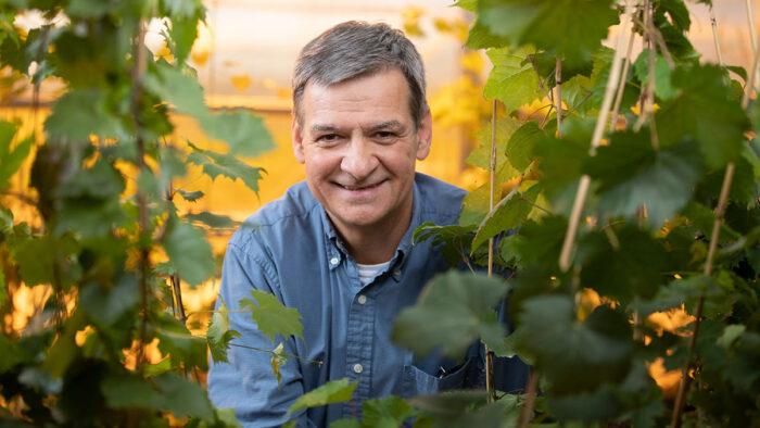 Laszlo Kovacs in Temple Hall greenhouse