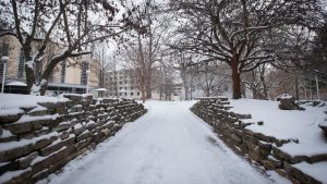 Snow-covered walkway