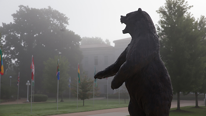 Bear statue standing in fog